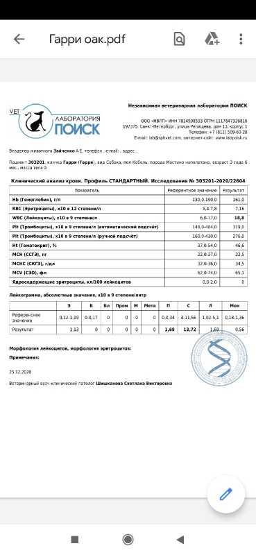 0CFBB24B-AA72-4C64-A16B-BA290C4836BD.jpeg