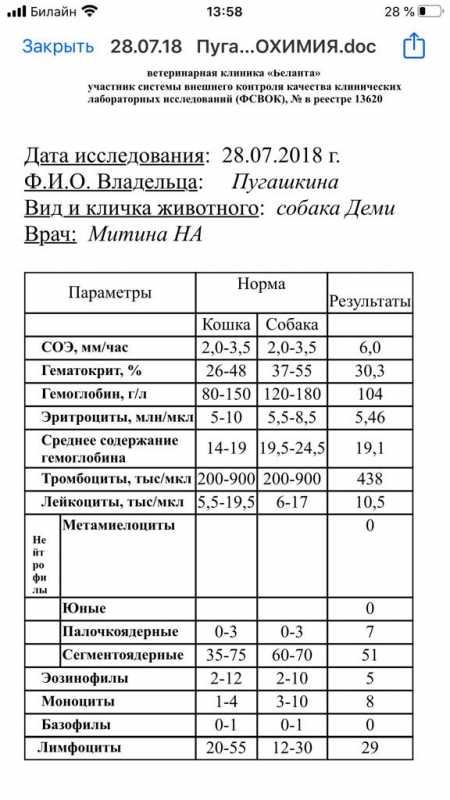 2174B96F-B704-4BA6-902B-732209AB88D5.jpeg