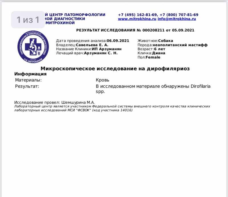 BE58D515-9AD2-4120-A167-CB5AC746E197.jpeg
