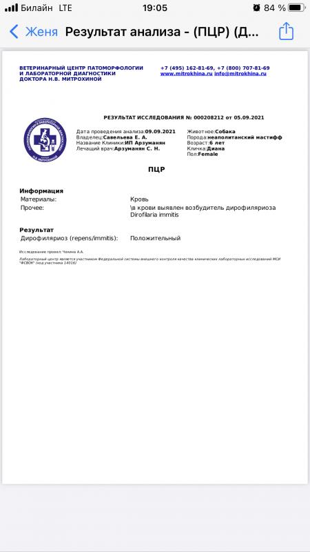 C56DC2E3-3553-423E-B0BE-4F9A2F4C575E.png