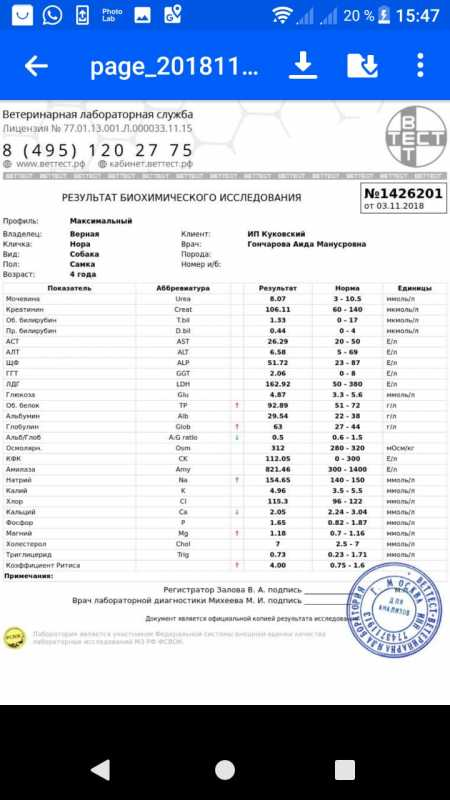 IMG-20181105-WA00061.jpg